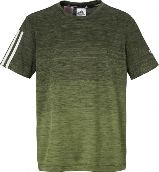 ADIDAS Kinder T-Shirt Gradient
